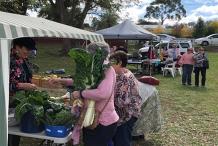 St Matthias' Harvest Festival Market