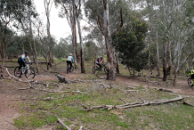 MTB Skills Development: Switchbacks Masterclass: Lysterfield