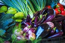 Weekly Murwillumbah Farmers' Market