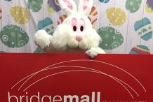 Bridge Mall Easter Festival