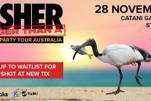 Fisher Australian Beach Party Tour   Catani Gardens, St Kilda