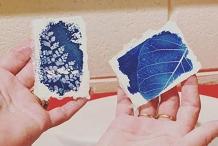 Capturing sunlight - intro to cyanotype printing