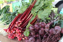 Camden Fresh Produce Market
