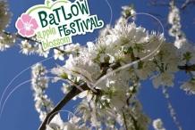 Batlow Apple Blossom Festival