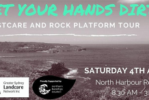 GYHD! - CoastCare and Rock Platform Tour
