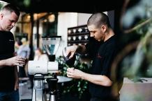 Specialty Barista Training #03- Brew Master