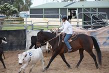 PRS&P Ranch Sorting 2020