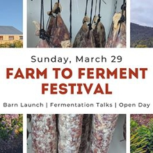 Farm to Ferment Festival - Now postponed until Spring