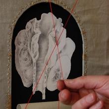 Exhibition: A Complex Beauty by Lauren Black