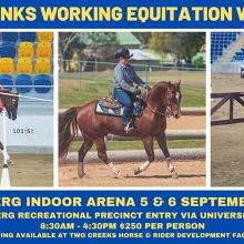 Sue Franks Bundaberg Working Equitation Weekend