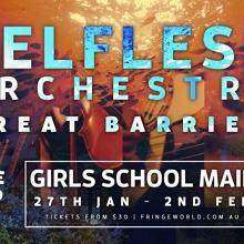 Selfless Orchestra: Great Barrier | Fringe World Festival 2020