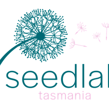 Seedlab Tasmania Information Session