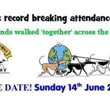 2020 Great Global Greyhound walk Launceston Leg