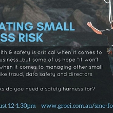 Navigating Small Business Risk ?
