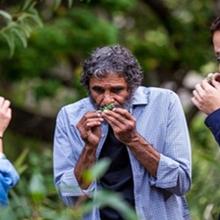 Aboriginal  Cultural Landscape Walking Tour of Brisbane CBD