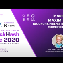 Maximising Blockchain Benefits and Reducing Harms
