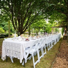 High Tea & Annsleigh Gardens
