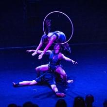 BOSS SQUAD - Adelaide Fringe Festival