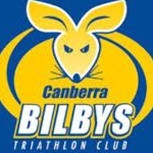 Bilbys swim training