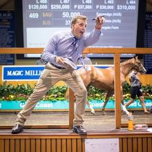 Magic Millions Gold Coast Yearling Sale 2021