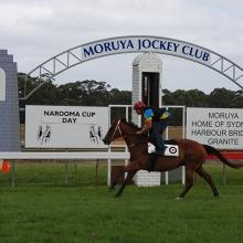 Easter Cup: Moruya Race Day