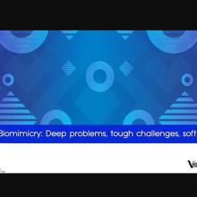 Oceanic Biomimicry: Tough challenges, soft robotics