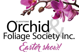 Gladstone Orchid & Foliage Society Inc Annual 3 Day Show