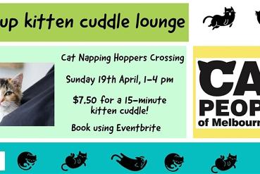 Pop-up Kitten Cuddle Lounge