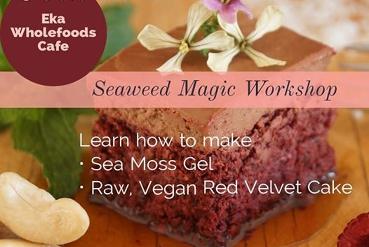 Seaweed Magic Gut Health Workshop