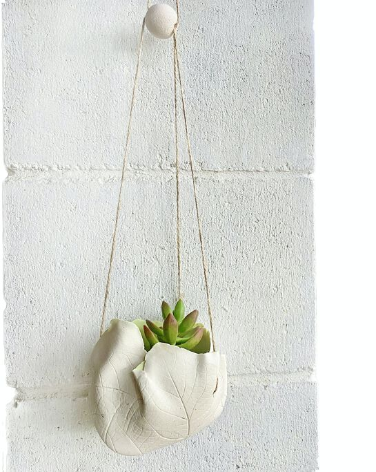 Online live streaming class: DIY Clay Hanging Planter