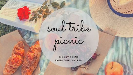 Soul Tribe Picnic - Mossy Point