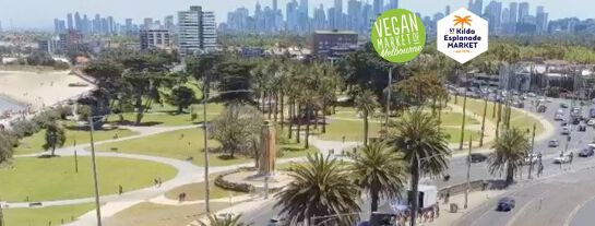 VMM Presents 'Plant Based Paradise' at St Kilda Esplanade Market