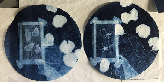 Cyanotype Printing- Catching Images with Sunlight-School Holiday session