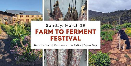 Farm to Ferment Festival - Now postponed until Spring