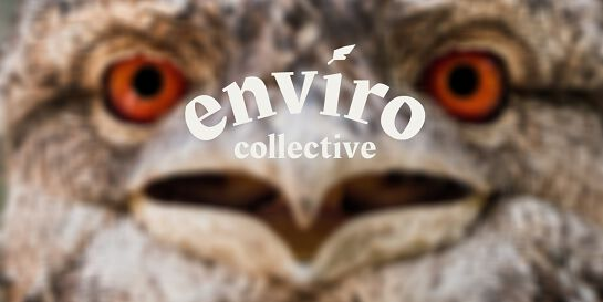 EnviroCollective CDU AGM and Changing Tides Film