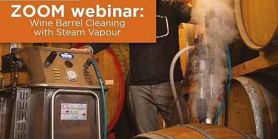 Virtual Demonstration: How Steam Kills Brettanomyces in Wine Barrels