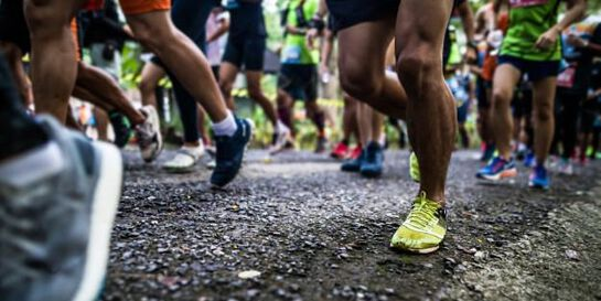 Academic Walk/Run