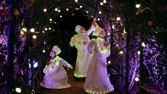 Midsummer Night Lights Show