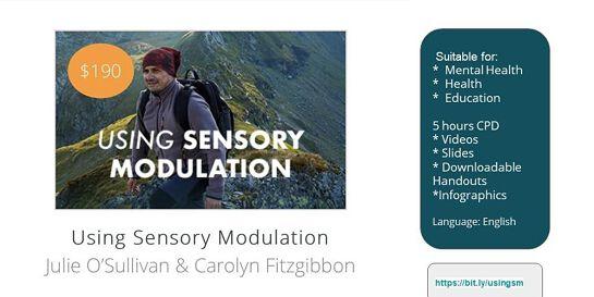 Using Sensory Modulation Online Course