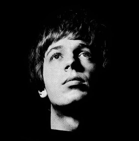 The Sun Ain't Gonna Shine Anymore - The Songs of Scott Walker