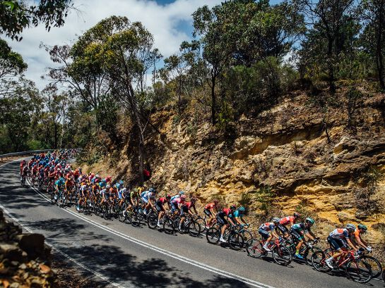 Santos Festival of Cycling: Stage 2 Finish - Men's & Women's