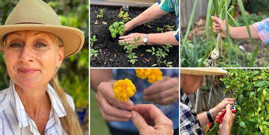 Therapeutic Gardening Provider Training