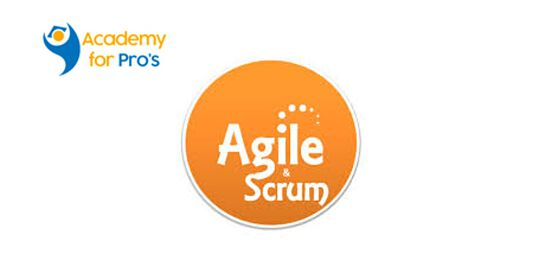 Agile & Scrum 1 Day Virtual Live Training in Melbourne