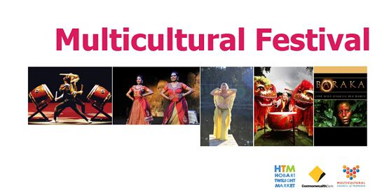 The Multicultural Festival
