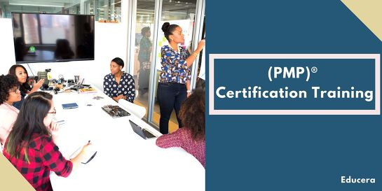 PMP Online Training in  Perth, ON