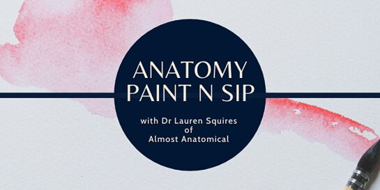 Anatomy Art Paint 'n Sip - Anatomical Heart