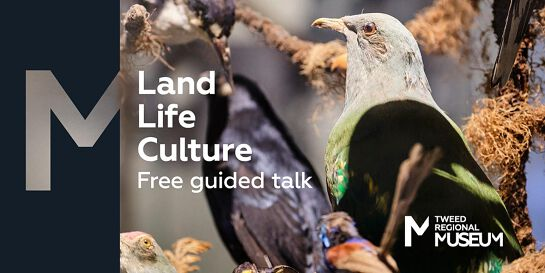 Land Life Culture Guided Talk