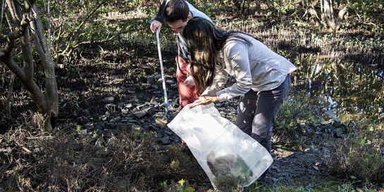 Clean Up Haslams Creek Flat - Park Care