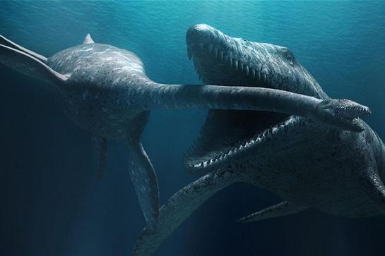 Ocean Talks: 2020 Series