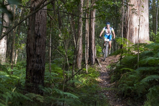 Port Macquarie Trail Festival